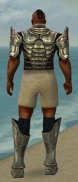 Warrior Sunspear Armor M gray chest feet back.jpg