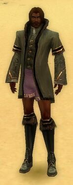 Mesmer Norn Armor M gray chest feet front.jpg