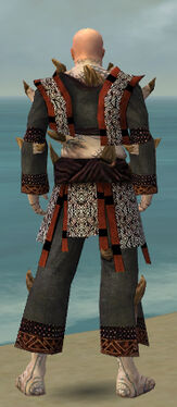 Monk Primeval Armor M gray back.jpg