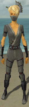 Assassin Shing Jea Armor F gray front.jpg