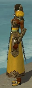 Dervish Asuran Armor F dyed side.jpg