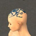 Monk Istani Armor F dyed head side.jpg