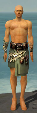 Ritualist Canthan Armor M gray arms legs front.jpg