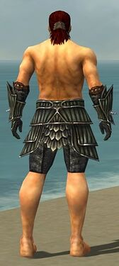 Warrior Wyvern Armor M gray arms legs back.jpg