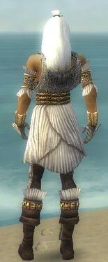 Elementalist Elite Sunspear Armor M dyed back.jpg