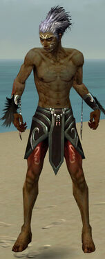 Necromancer Sunspear Armor M gray arms legs front.jpg