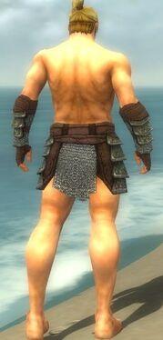 Warrior Krytan Armor M gray arms legs back.jpg