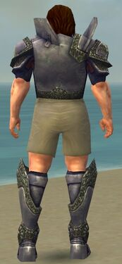 Warrior Platemail Armor M gray chest feet back.jpg
