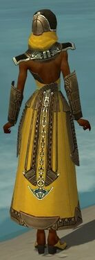 Dervish Asuran Armor F dyed back.jpg