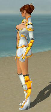 Elementalist Ascalon Armor F dyed side.jpg