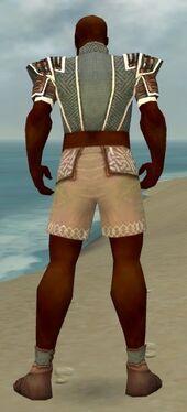 Monk Elite Judge Armor M gray chest feet back.jpg