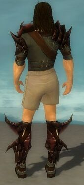 Ranger Primeval Armor M gray chest feet back.jpg