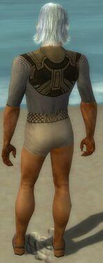 Dervish Asuran Armor M gray chest feet back.jpg