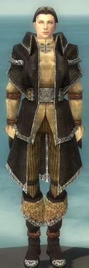 Elementalist Ancient Armor M dyed front.jpg