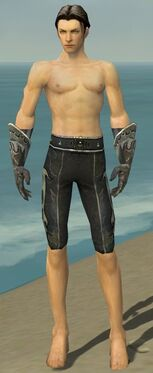 Elementalist Elite Flameforged Armor M gray arms legs front.jpg