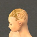 Monk Primeval Armor F dyed head side.jpg