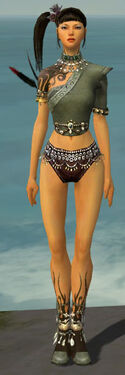 Ritualist Canthan Armor F gray chest feet front.jpg