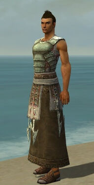Dervish Deldrimor Armor M gray side.jpg
