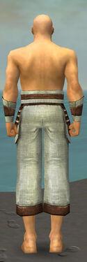 Monk Censor Armor M gray arms legs back.jpg