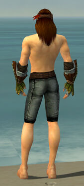 Ranger Druid Armor M gray arms legs back.jpg