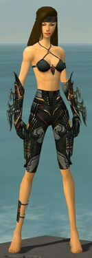 Assassin Elite Kurzick Armor F gray arms legs front.jpg