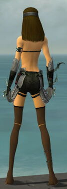 Assassin Elite Luxon Armor F gray arms legs back.jpg