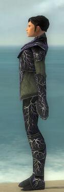 Elementalist Elite Stormforged Armor M gray side.jpg