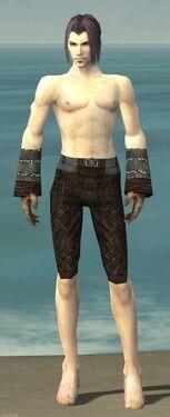 Elementalist Vabbian Armor M gray arms legs front.jpg