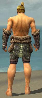 Warrior Charr Hide Armor M gray arms legs back.jpg