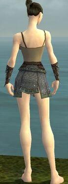 Warrior Tyrian Armor F gray arms legs back.jpg