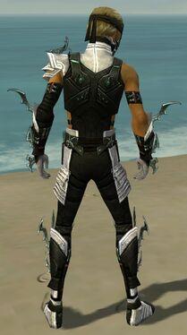 Assassin Elite Luxon Armor M dyed back.jpg