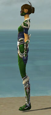 Assassin Norn Armor F dyed side.jpg