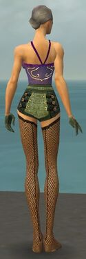 Mesmer Elite Kurzick Armor F gray arms legs back.jpg