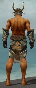 Warrior Elite Sunspear Armor M gray arms legs back.jpg