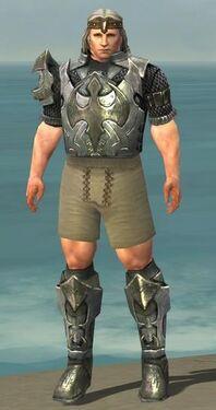 Warrior Elite Templar Armor M gray chest feet front.jpg