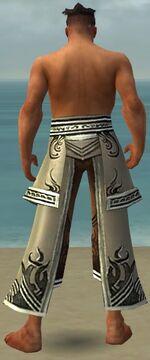 Aureate Pants M gray back.jpg