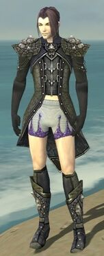 Elementalist Elite Stoneforged Armor M gray chest feet front.jpg