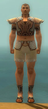 Monk Asuran Armor M gray chest feet front.jpg