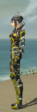 Necromancer Elite Kurzick Armor F dyed side.jpg