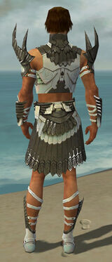 Paragon Elite Sunspear Armor M gray back.jpg