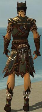 Ritualist Monument Armor M gray back.jpg