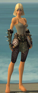 Warrior Elite Charr Hide Armor F gray arms legs front.jpg