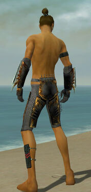 Assassin Exotic Armor M gray arms legs back.jpg