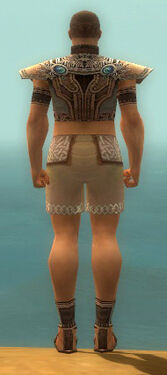 Monk Asuran Armor M gray chest feet back.jpg