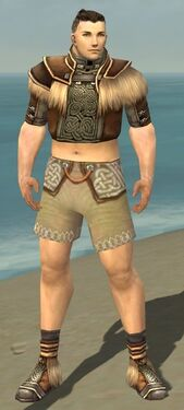 Monk Norn Armor M gray chest feet front.jpg
