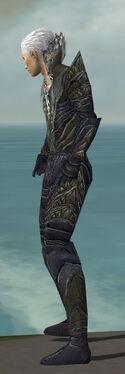 Necromancer Krytan Armor M gray side.jpg