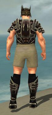 Warrior Ancient Armor M gray chest feet back.jpg