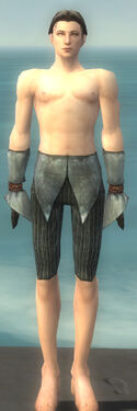 Elementalist Ancient Armor M gray arms legs front.jpg