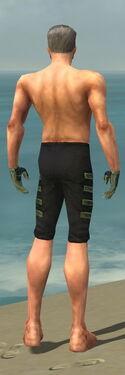 Mesmer Elite Kurzick Armor M gray arms legs back.jpg