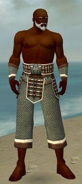 Monk Elite Judge Armor M gray arms legs front.jpg